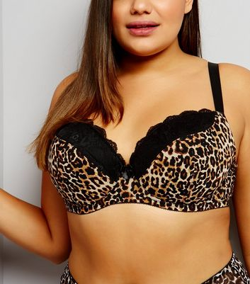Curves Brown Leopard Print Lace Trim Bra
