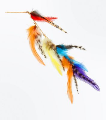 Multi Coloured Feather Hair Clips