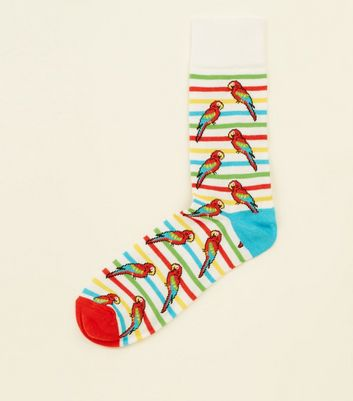 White Parrot Print Stripe Socks
