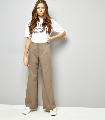 Stone Pleated Wide Leg Pleated Trousers New Look