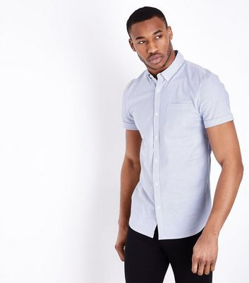 Blue Stripe Muscle Fit Oxford Shirt