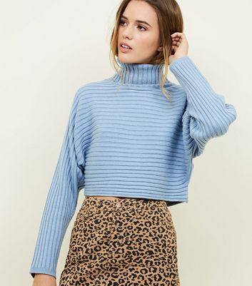 Pale Blue Ribbed Roll Neck Cropped Batwing Jumper