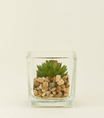 Clear Mini Glass Square and Faux Plant