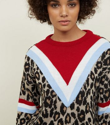 Carpe Diem Brown Leopard Print Chevron Jumper New Look