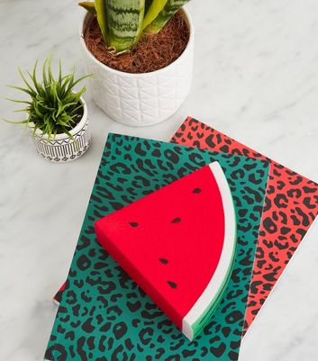 Red Watermelon Stress Ball
