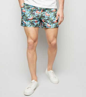 Turquoise Flamingo Print Swimming Shorts