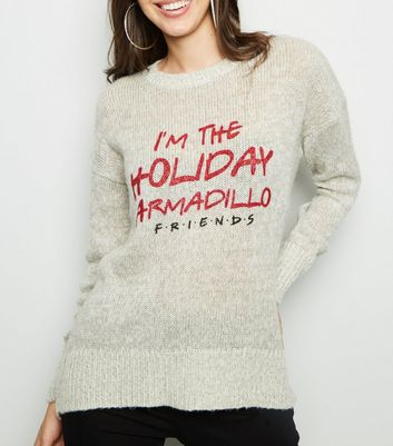 Pale Grey Friends Holiday Armadillo Christmas Jumper