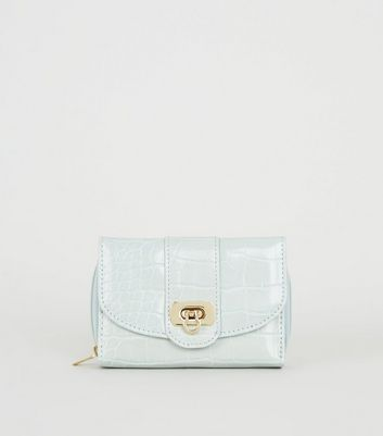 Mint Green Faux Croc Small Purse
