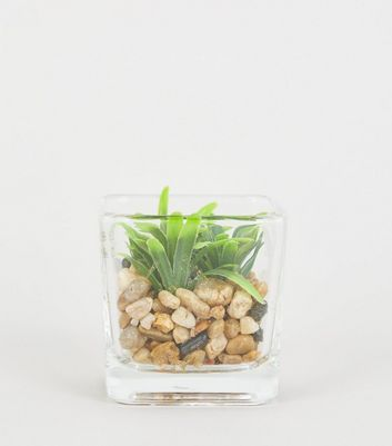 Clear Glass Mini Cube Planter