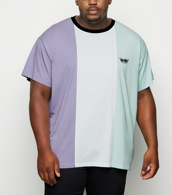Plus Size Lilac Vertical Colour Block T-Shirt